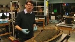 Mumiyalar - Qədim Misir tarixi