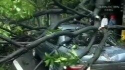 Bão Haiyan hoành hành ở miền Trung Philippines
