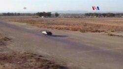 Auto volador para defensa