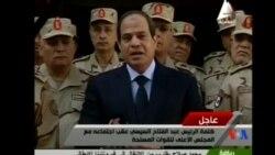 2015-02-01 美國之音視頻新聞: 埃及總統稱打擊激進分子是持久戰