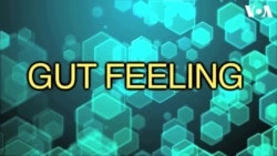 «Английский за минуту»: gut feeling