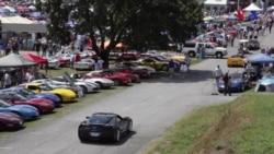Dünyanın ən böyük Corvette fesivalı