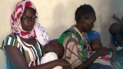 Carnet de Santé : la malaria