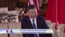 Tập gọi Trump, đề nghị giải pháp hòa bình cho Bắc Triều Tiên