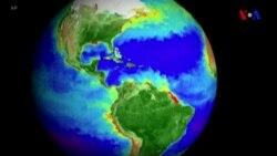 NASA karbon dioksidin Yer kürəsinə təsirinin fotolarını nümayiş etdirib