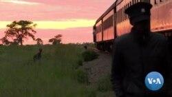 """Au Zimbabwe, la résurrection du """"train de la liberté"""""""