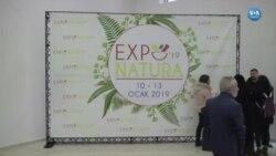 İstanbul'da Organik Ürünler Fuarı