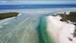 海洋塑料垃圾泛滥 威胁生态清理困难