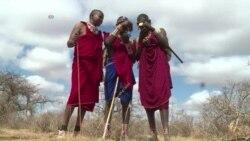 Juhudi za kuwalinda simba Kenya na Rwanda