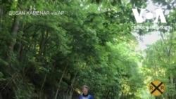 Бігун пробіг 350 км, щоб побачити свою бабусю. Відео
