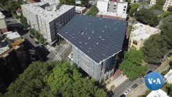 Seattle's Bullitt Center: A Green Building Inspiring Visitors