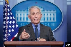 FILE - Dr. Anthony Fauci, director of the National Institute of Allergy and Infectious Diseases, speaks during a press briefing at the White House in Washington, April 13, 2021.