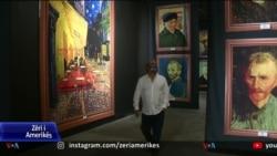 Ekspozita virtuale me pikturat e Vincent Van Gogut