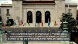 OAS Supports Nicaragua's Fight for Democracay