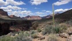 Buyuk vodiylar - The Grand Canyon #AmerikaManzaralari