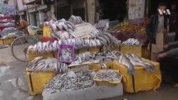 رونق بازار ماهی فروشان در قندهار