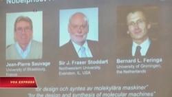 Nobel Hóa học cho người sáng chế 'cỗ máy nhỏ nhất thế giới'