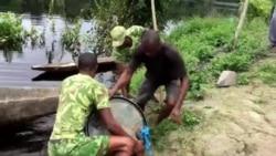 Le braconnage d'éléphants au Gabon