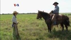 Hidup di Ranch Amerika