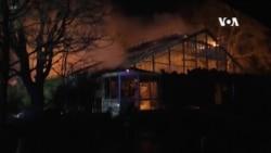 三名婦女放天燈導致德國動物園大火導致30多隻動物死亡