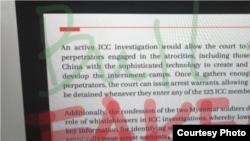 During a panel discussion at Brandeis University on China's Xinjiang policy, Uighur attorney and advocate Rayhan Asat's Zoom screen was hijacked Nov. 13, 2020.