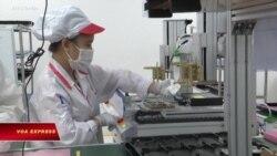 WB: Thâm hụt thương mại của Việt Nam gia tăng