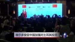 埃尔多安促中国加强对土耳其投资