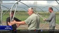 Program i USAID për bujqësinë në Shqipëri