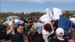 Mass Pillow Fight Turns Washington DC into Urban Playground
