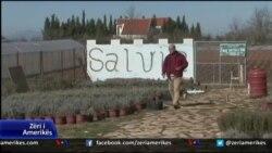 Bujqësia në Malësi të Madhe