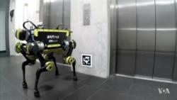 นักวิทยาศาสตร์สวิสพัฒนาหุ่นยนต์สี่ขาที่สามารถเดินได้อย่างมั่นคงสำหรับงานกู้ภัย