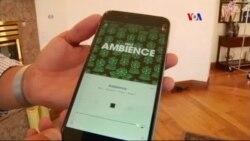 Nuevo servicio Apple Music