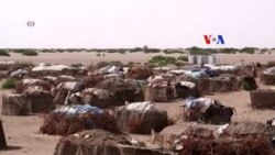 Fome ameaça África Subsaariana
