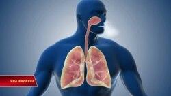 Hơn 40 người Việt Nam tự nguyện hiến phổi cứu phi công Anh mắc Covid-19