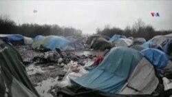 Miqrantlar Britaniyanın Avropa İttifaqı üzvlüyünə kölgə salır