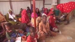 Conflict Creates Food Shortages in Niger