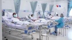 Թաիլանդցի ՝՝քարանձավային վարազների՛՛ առողջությունը լավ է