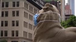 纽约公共图书馆大门石狮提醒人们戴口罩