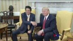日本首相安倍晉三將赴美會晤川普