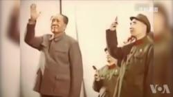 新老华裔学者洛杉矶论文革