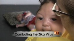 Zika Virus Spreading