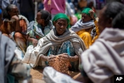 FILE - An Ethiopian woman scoops up grains of wheat after it was distributed by the Relief Society of Tigray in the town of Agula, in the Tigray region of northern Ethiopia, May 8, 2021.