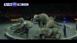13 con voi cuối cùng của rạp xiếc Mỹ sắp về hưu (VOA60)