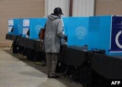 جارجیا میں ووٹںگ کا ایک منظر، فائل فوٹو