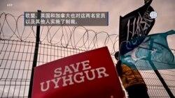 反映美国政府政策立场的视频社论:美国与盟国因新疆问题制裁中国官员