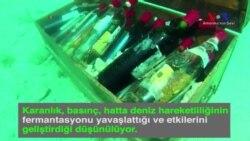 Deniz Altında Şarap Üretmek Mümkün mü?