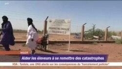 Les touaregs du Niger passent de l'élevage à l'agriculture