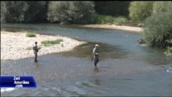 "Sporti i peshkimit ""Fly Fishing"""