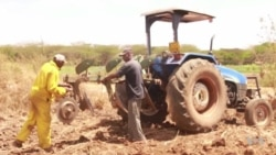 Small Scale Farmers in Kenya Turn to Mechanized Agriculture