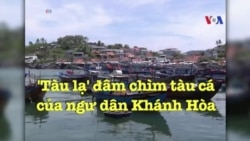 'Tàu lạ' đâm chìm tàu cá của ngư dân Khánh Hòa, 5 người mất tích